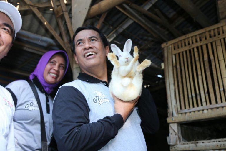 Melawan Kemiskinan Lewat Program 'Bekerja' Kementan
