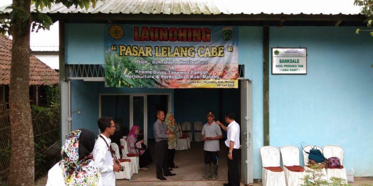 Warga Malang Antusias Kunjungi Pasar Lelang Cabai Milik Kementan