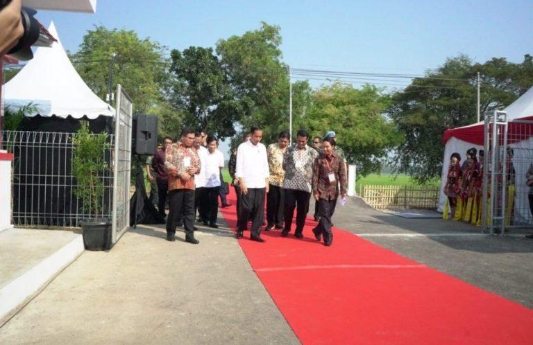 Jokowi Resmikan Program Digitalisasi Pertanian di Indramayu