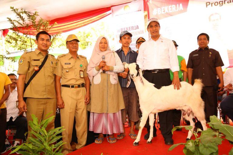 Pemerintah Terus Genjot Program Bekerja Berbasis Pertanian