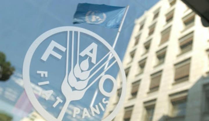 Pakar Pangan UB Apresiasi Indonesia sebagai Anggota Dewan FAO