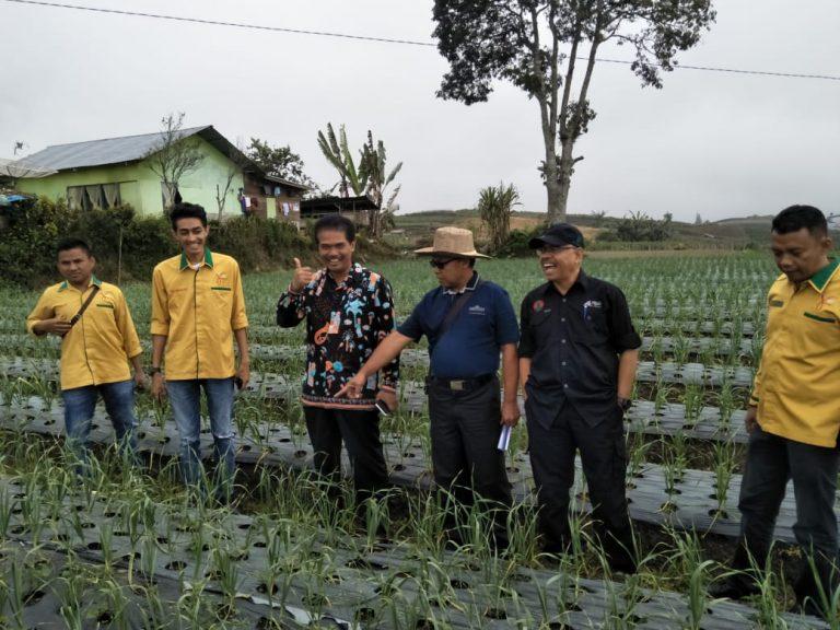 Kementan Sukses Jadikan Solok Tulang Punggung Bawang Sumatera