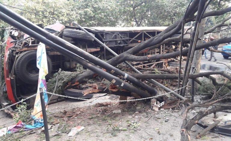 Bruakk! Bus Transjakarta Tabrak Tiang Listrik dan Pohon di Patal Senayan