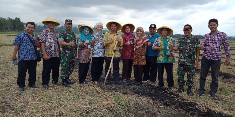 Kembangkan Sistem TABELA, Kementan Optimis Tingkatkan Produktivitas Pertanian di Kebumen