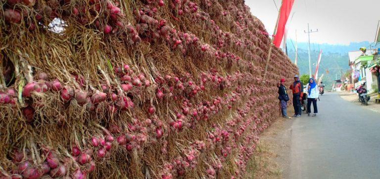 Kementan Jamin Ketersediaan Bawang Merah di Jatim