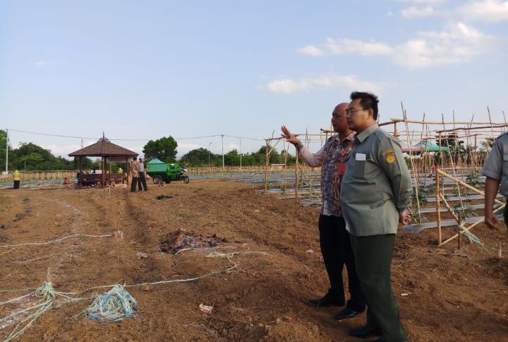 Momentum Angkat Potensi Pertanian Lahan Rawa, Kesiapan Event HPS di Kalsel