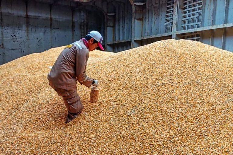 Upaya Kementan Sudahi Polemik Impor Jagung