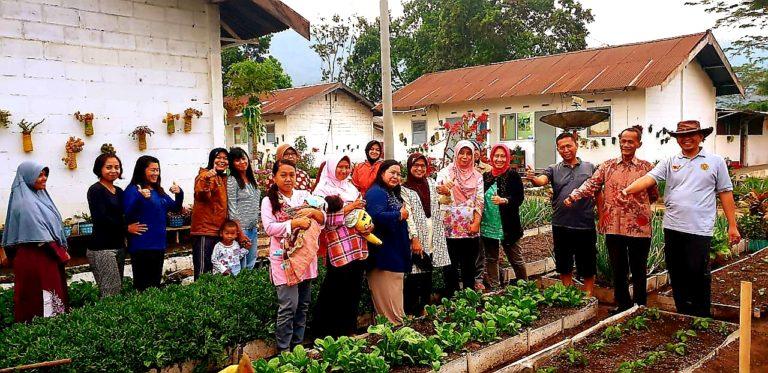 Pemanfaatan Pekarangan Berikan Berkah bagi Penduduk Ijen