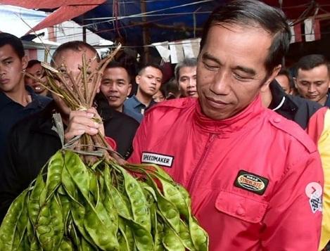 Harga Kelapa Sawit Anjlok, Jokowi Sarankan Masyarakat Beralih ke Jengkol dan Petai