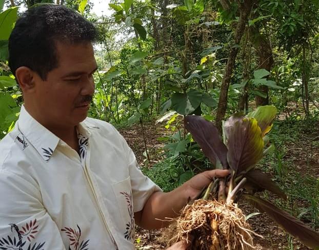 Petani Karanganyar Siap Tingkatkan Produksi Empon Empon Herbal