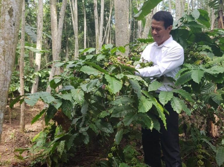Kurikulum Kopi dan Kakao Tingkatkan Kompetensi
