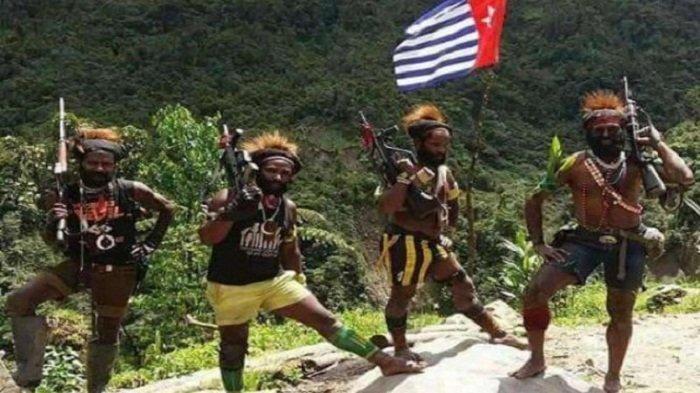 Legislator Papua: Aksi Separatis KKB Masuk Pelanggaran HAM