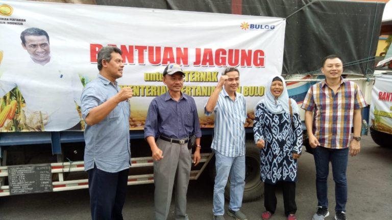 Kementan dan Bulog Distribusikan Jagung Bantu Peternak Ayam di Jateng