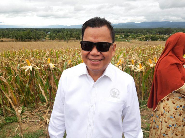 Komisi IV DPR RI Minta Menko Darmin Jangan Bicara Impor, Tapi Turun ke Lapangan