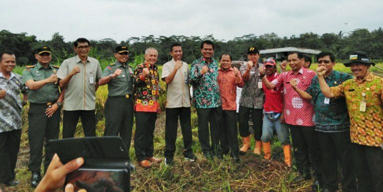 Rakor Sergap di Jawa Tengah, Bulog Siap Menyerap Gabah Petani