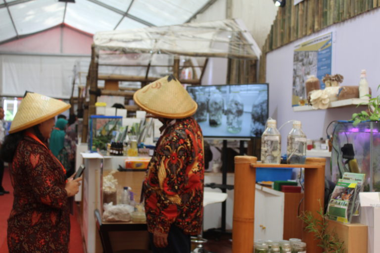 """Berjejer Rapi, 78 Stan """"Mejeng"""" Cantik di Pameran RNPK 2019"""