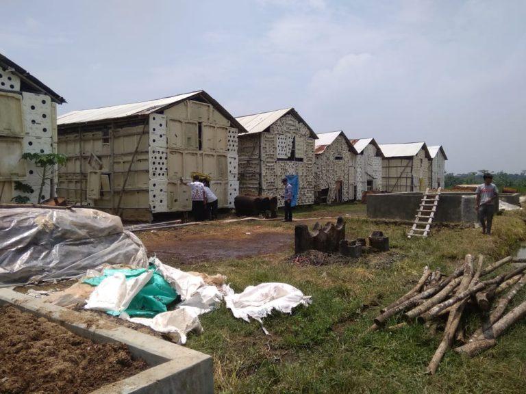 Ketangguhan Petani Jamur Kabupaten Subang