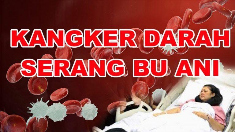 Mengenal Kanker Darah, Penyakit yang Menyerang Ani Yudhoyono