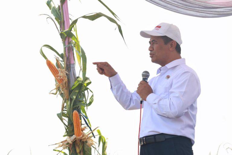 HIPMI apresiasi Menteri Amran tolak impor jagung Argentina