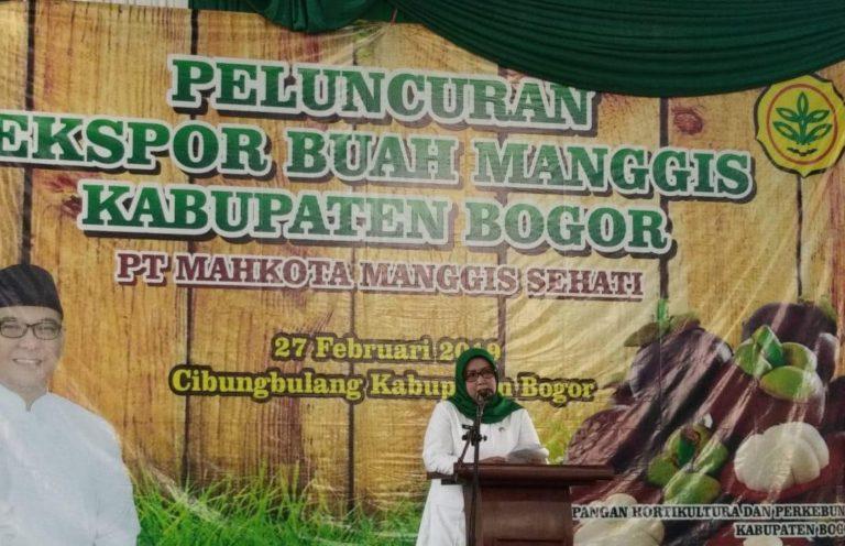Banjir Bandang di Gunung Mas, Bupati Bogor 'Sentil' PTPN