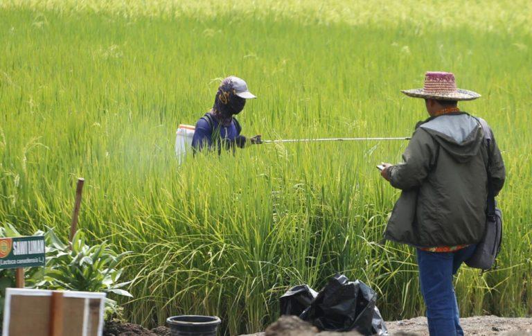 Ajakan Ikuti Rembug Petani Peternak Menuai Penolakan Petani Sendiri
