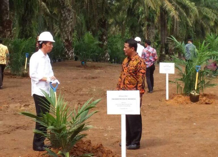 Kementan Siap Kolaborasi Satu Data Kelapa Sawit Indonesia