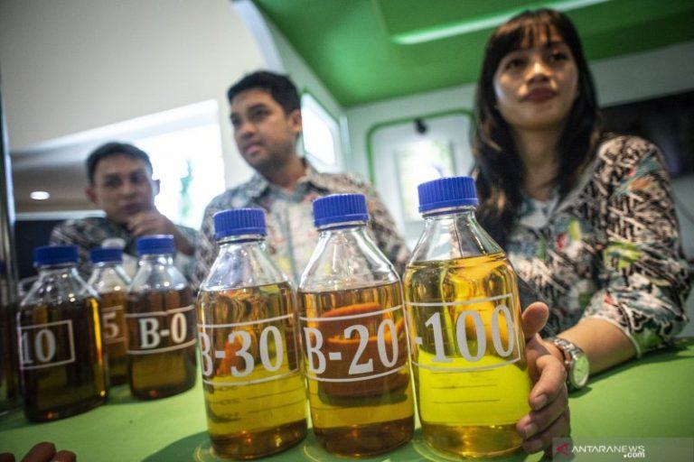 Pengembangan B100, Langkah Strategis Pemerintah Kurangi Impor BBM