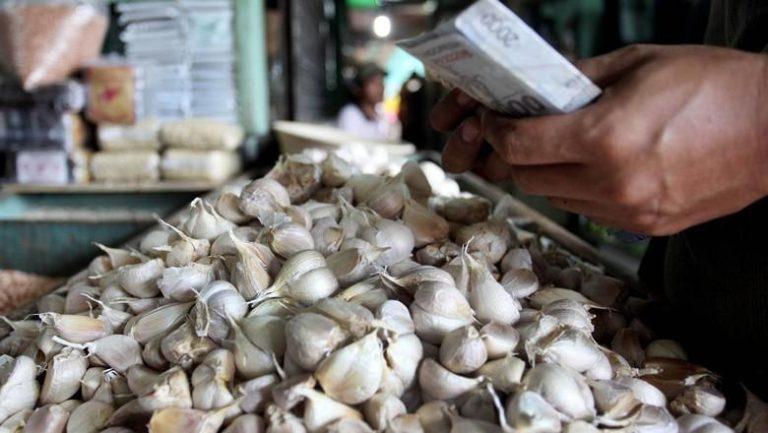 HIPMI Kecam Permendag tentang Pembebasan Impor Bawang Putih dan Bombay