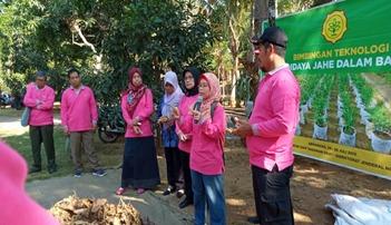 Kaya Khasiat, Kementan Dorong Optimalisasi Lahan Jahe di Bogor