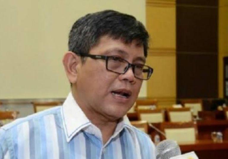 Pasal Penghinaan Presiden, Anggota DPR: Itu Delik Aduan