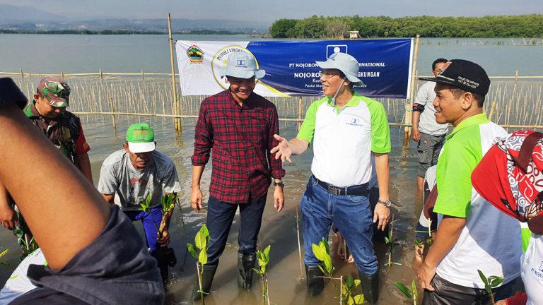 Bersama Gubernur Jateng, PT Nojorono Tanam Mangrove di Pesisir Semarang