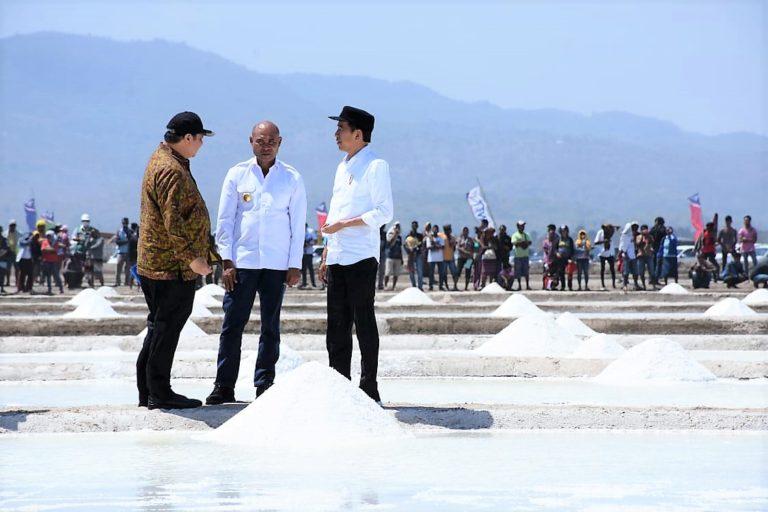 Dinilai Berpotensi Hasilkan Garam Industri, Pemerintah Pacu Investasi di Kupang