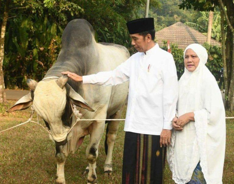Idul Adha, Jokowi Ajak Tingkatkan Kesalehan Sosial