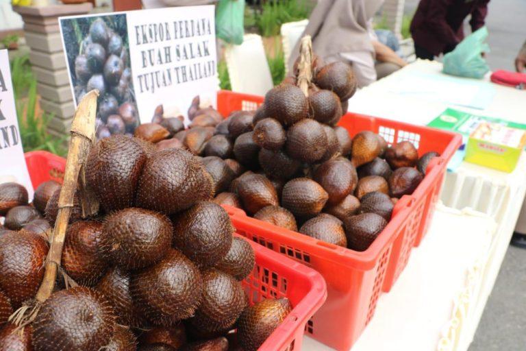 Salak Deli Serdang Rambah Pasar Ekspor ke Thailand