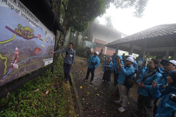 Pertamina Eco Camp 2019, Lakukan Ekspedisi Konservasi Owa Jawa