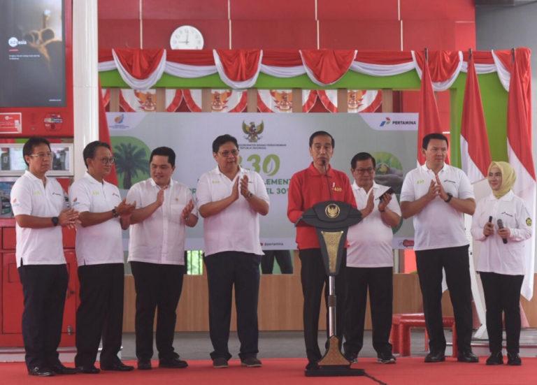 Jokowi Sebut Implementasi B30 Bisa Hemat Devisa Hingga Rp 63 Triliun, Ini Alasannya