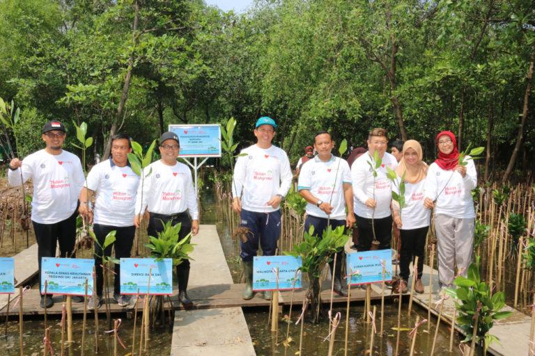 Dukung Penanganan Abrasi, Bank DKI Tanam 5000 Bibit Mangrove di Jakut