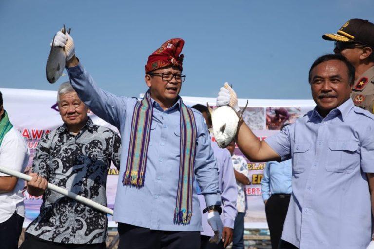 Sambangi NTB, Menteri Edhy Tinjau Budidaya Pembesaran Lobster