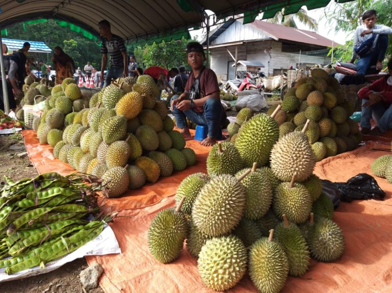 Angkat Pamor Buah Lokal, Pemkab Banjar Gelar Festival Durian 2020