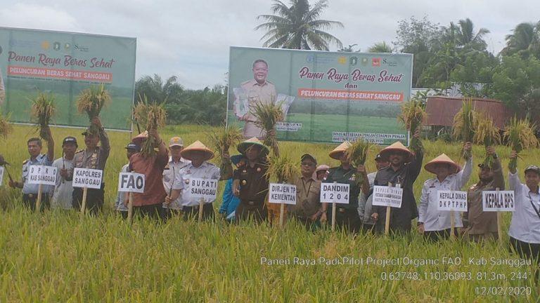 FAO-Kementan Dukung Pengembangan Beras Organik di Kabupaten Sanggau