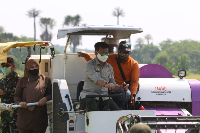 Menteri Syahrul Jajal Langsung Combine Harvester saat Panen Raya di Pandeglang