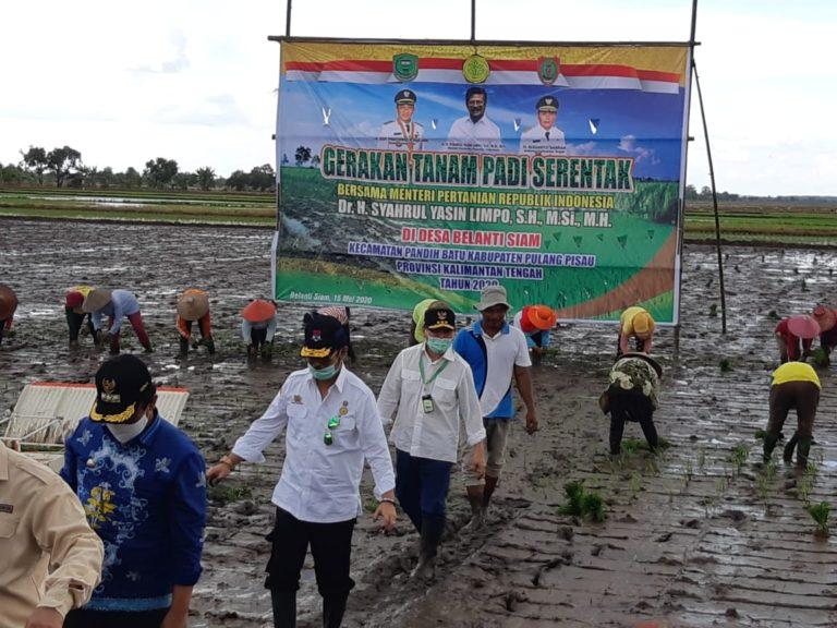 Kalteng Dukung Intensifikasi dan Ekstensifikasi Lahan Rawa untuk Pangan Nasional