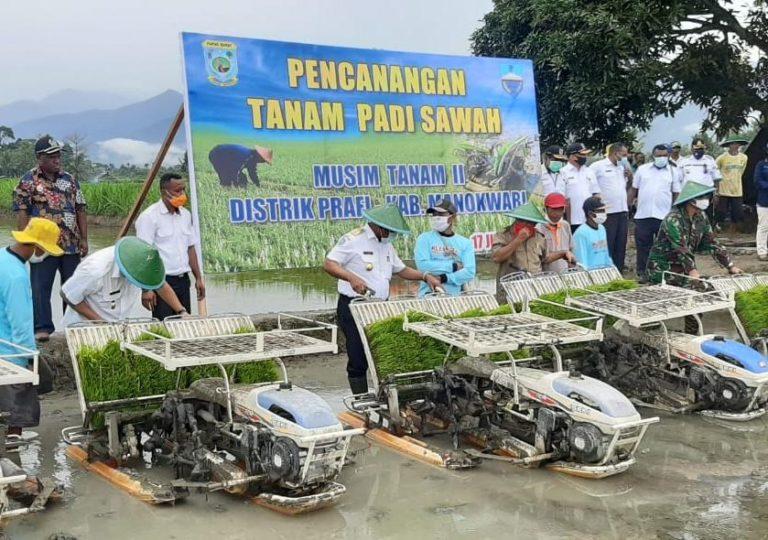 Gubernur Papua Barat Canangkan Gerakan Percepatan Tanam Padi