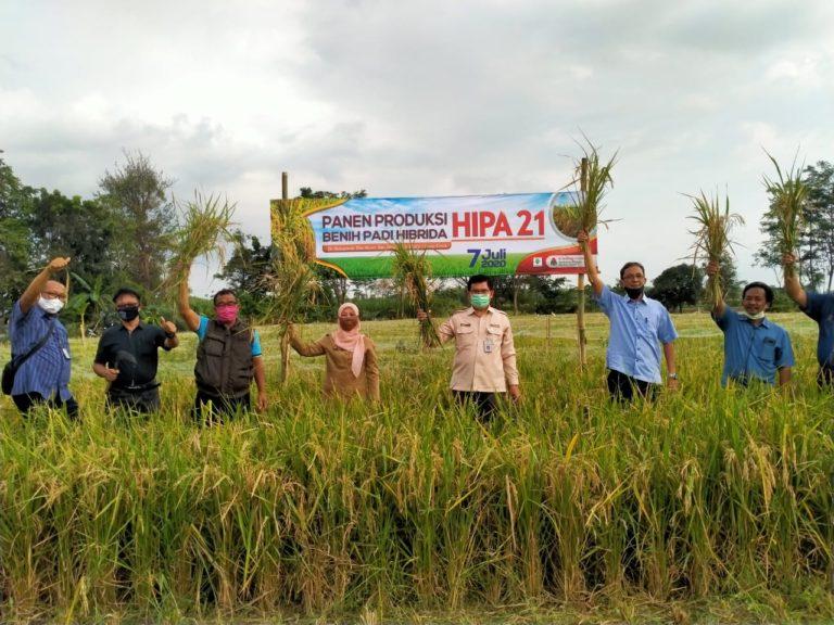 Menurut Guru Besar IPB, Dua Faktor Ini Membuat Ekspor Pertanian Terus Meningkat
