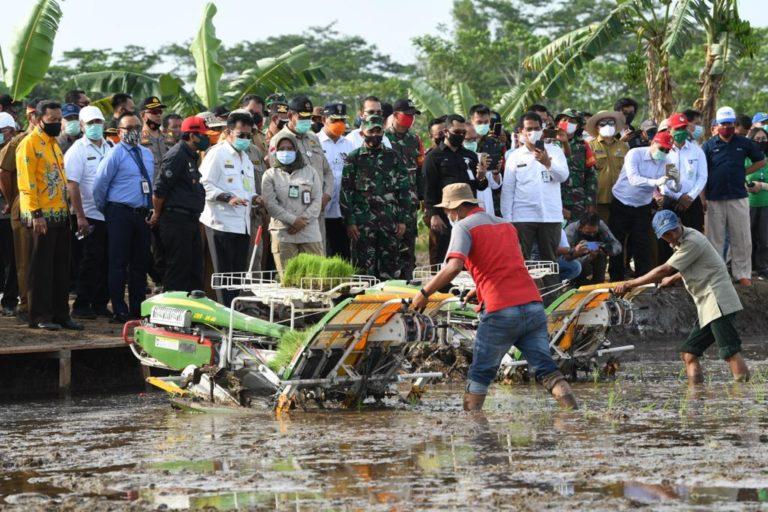 Mentan Dorong Percepatan Tanam di Lokasi Food Estate Kalimantan Tengah