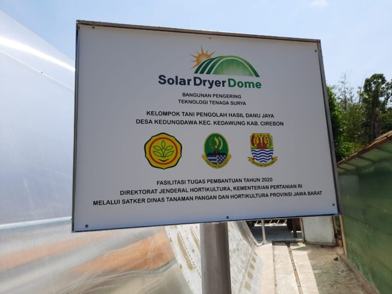 Solar Dryer dari Kementan Tingkatkan Nilai Tambah Produk Mangga di Tingkat Petani