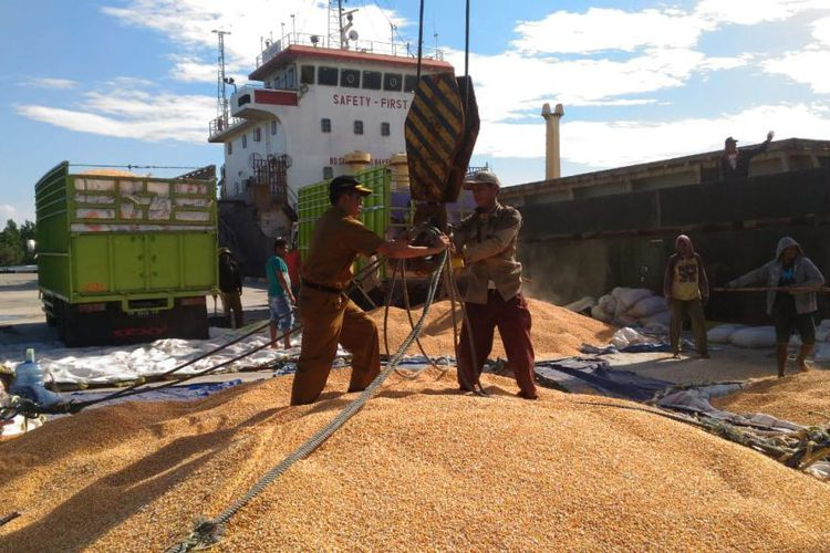 Kabupaten Touna Sukses Ekspor Jagung, Kementan Dorong Kembangkan Korporasi Pertanian