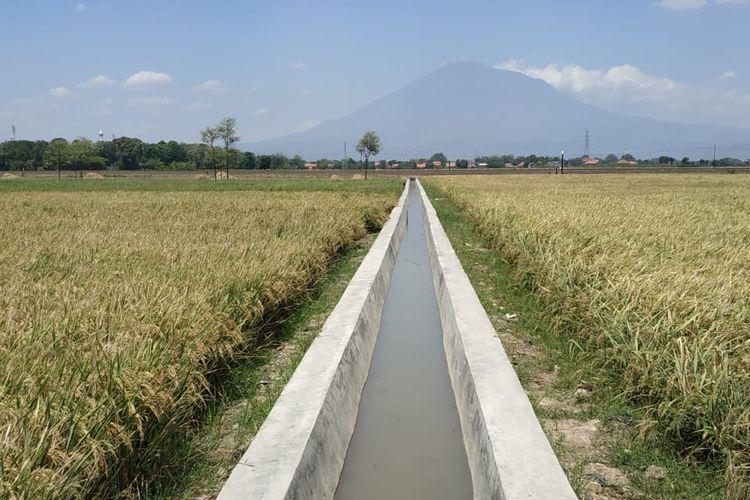 Ada RJIT, Produktivitas di Lemahabang Karawang Capai 8 Ton