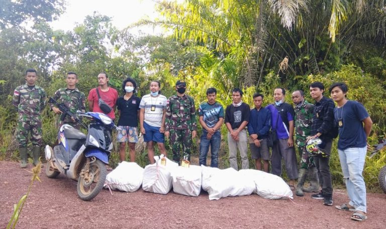TNI Gagalkan Penyelundupan Ratusan Botol Miras di Perbatasan RI-Malaysia