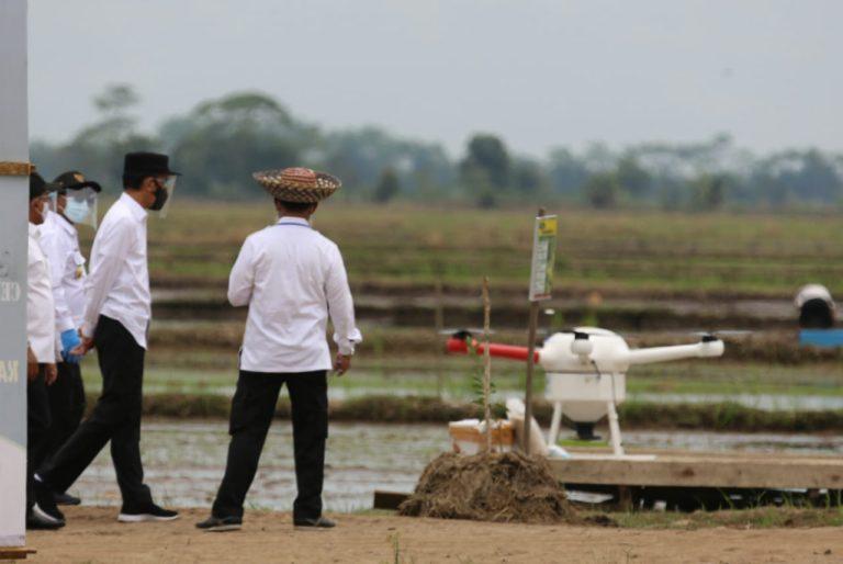 Jokowi Tinjau Percontohan Kawasan Food Estate Kalteng